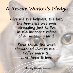 a-rescue-workers-pledge