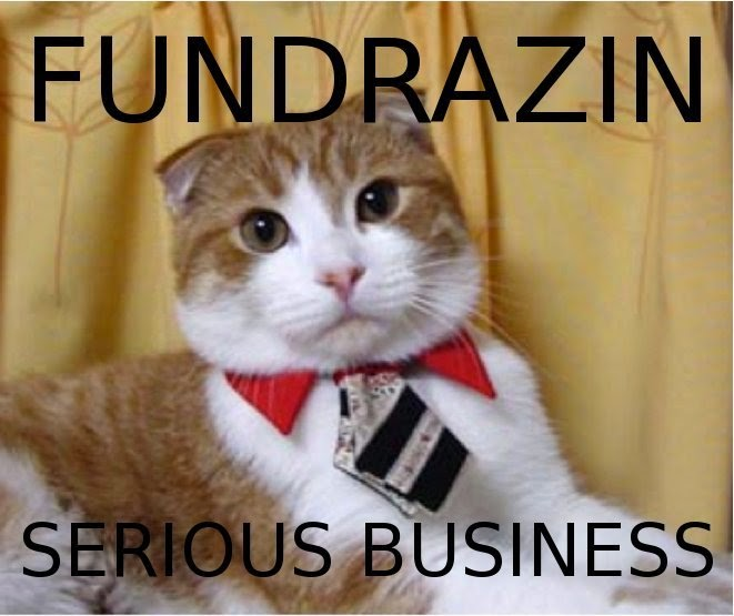 fundraiser cat?w=328&h=275 fundraising and grant writing almost home adoptions for rescued cats