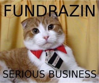 fundraiser-cat