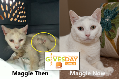 maggie-then-now-web-co-gives-day.png